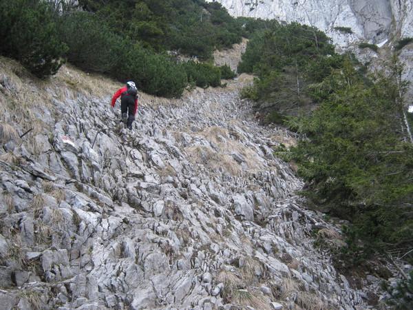 Klettersteig Traunstein : Klettersteig.de klettersteig beschreibung hans hernler steig