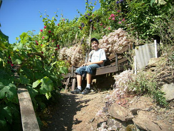 Klettersteig Mosel : Klettersteig beschreibung calmont